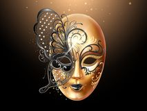 用蝴蝶鞋带装饰的Volto面具 皇族释放例证