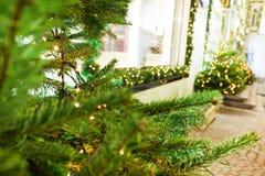 用诗歌选和圣诞树装饰的街道 图库摄影