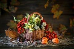 用野花、花楸浆果和秋叶装饰的木桌 库存图片