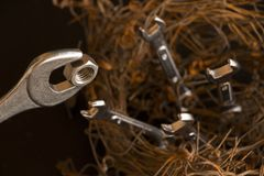 用钢绳和板钳做的鸟巢的图 最大他们模仿是哺养坚果的母亲对 库存图片