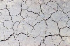 用镇压特写镜头盖的泥铺跑道的纹理 免版税库存照片