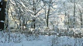 用雪包括的冬天老围场 股票视频