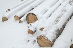 用雪包括的日志 库存照片