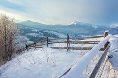 用雪和树盖的冬天路 图库摄影