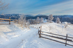 用雪和树盖的冬天路 免版税库存图片