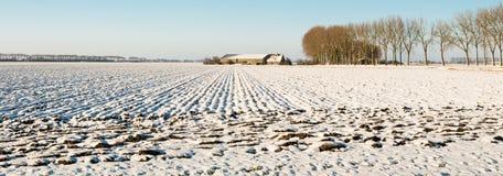 用雪报道的一个被犁的领域的全景图片 免版税库存图片