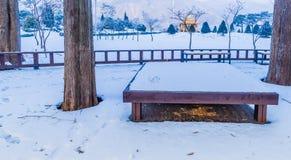 用雪报道的公园冬天风景 库存图片
