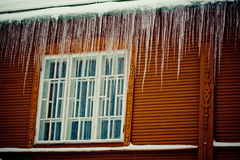 用雪报道的冬天分支 免版税库存照片