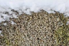 用雪报道的冬天石纹理,框架背景冬天 免版税库存图片