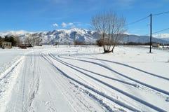 用雪报道的冬天风景 免版税库存图片