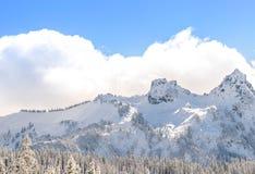 用雪报道的山风景看法 免版税库存图片