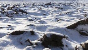 用雪盖犁了地球 免版税库存照片