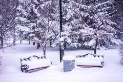 用雪盖的两条空的长凳在公园 库存图片