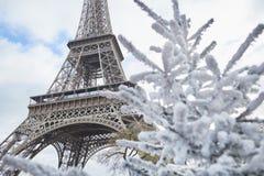 用雪盖的圣诞树在埃佛尔铁塔附近 免版税库存图片