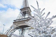 用雪盖的圣诞树在埃佛尔铁塔附近 免版税库存照片