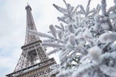 用雪盖的圣诞树在埃佛尔铁塔附近 图库摄影