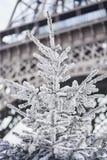 用雪盖的圣诞树在埃佛尔铁塔附近 库存图片