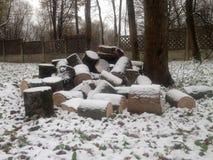 用雪盖的堆日志 图库摄影