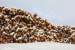用雪盖的木头日志 库存照片