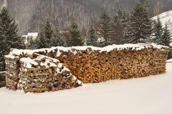 用雪盖的木柴 免版税库存图片