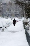 用雪盖的汽车在冬天 免版税库存照片