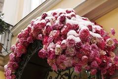 用雪盖的罗斯曲拱 免版税库存图片