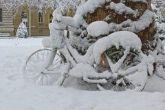 用雪盖的自行车 免版税图库摄影