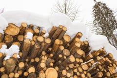 用雪盖的被堆积的木头,阿尔卑斯奥地利在萨尔茨堡 免版税库存图片