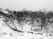 用雪盖的被忽略的庭院 免版税库存图片