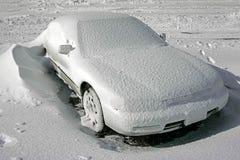 用雪盖的车 免版税库存图片