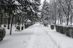 用雪盖的边路 免版税库存照片