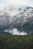 用雪盖的金牛座山的绿色倾斜 免版税库存图片