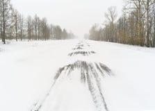一场飞雪 免版税库存图片
