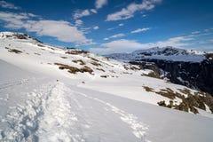 用雪盖的Trolltunga足迹 库存图片