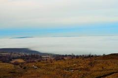 用雾盖的城市 库存图片