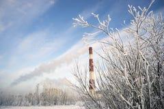 用霜和分支报道的锅炉管 免版税库存图片