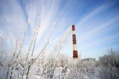 用霜和分支报道的锅炉管 免版税库存照片