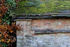 用青苔和叶子盖的老瓦在老砖和sto 免版税库存图片