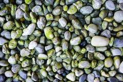 用青苔和地衣盖的石头纹理  库存照片