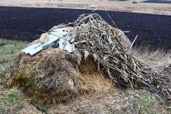 用青苔报道的领域的一个老干草堆 库存照片