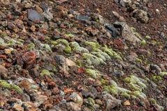 用青苔报道的冻结的火山的放射 北部突破巨大扎尔巴奇克火山裂痕爆发1975年 库存照片