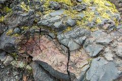 用青苔报道的冻结的火山的放射 北部突破巨大扎尔巴奇克火山裂痕爆发1975年 免版税库存照片