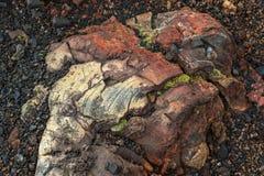 用青苔报道的冻结的火山的放射 北部突破巨大扎尔巴奇克火山裂痕爆发1975年 免版税库存图片