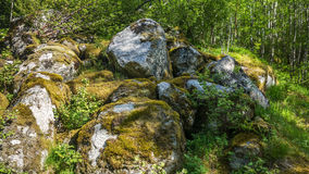 用青苔盖的巨大的石头 免版税库存照片