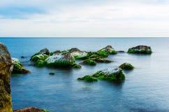 用青苔盖的石头在海在一个夏日,海景 免版税图库摄影