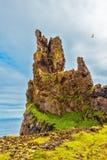 用青苔盖的美丽如画的岩石 免版税图库摄影