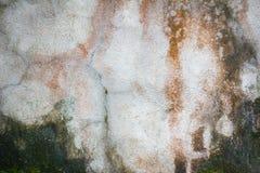 用青苔盖的老水泥难看的东西墙壁纹理作为bac 免版税库存图片