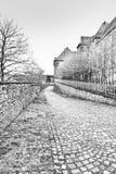 用青苔盖的路面在比利时 库存照片