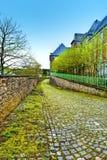 用青苔盖的路面在比利时 免版税图库摄影