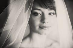 用面纱盖的美丽的年轻新娘画象  免版税库存图片